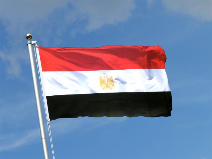 L'Egypte prend la présidence de l'Union Africaine