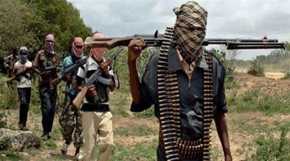 الكاميرون: استسلام 187 إرهابياً سابقاً في بوكو حرام للسلطات