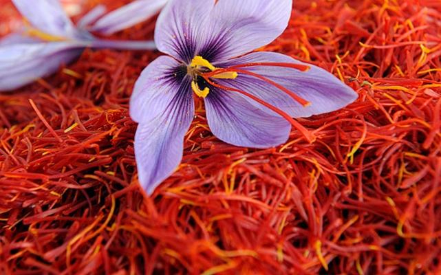 Azerbaijan's saffron ranks 2nd among most expensive vegetarian ingredients