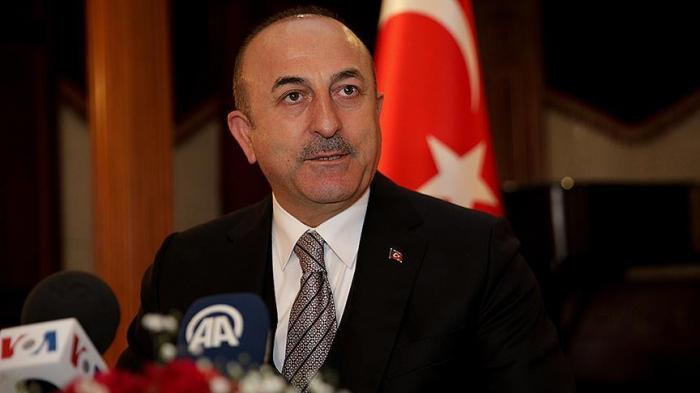 Cavusoglu s'entretient avec des sénateurs américains à Washington
