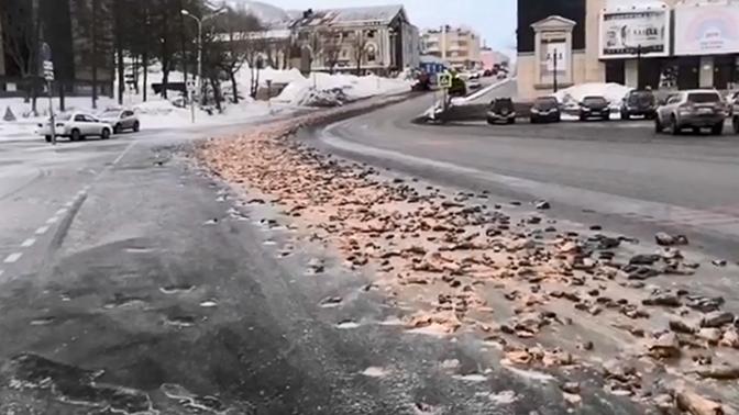Balıqlar Kamçatkada hökumət binasının qarşısını kəsdi - VİDEO