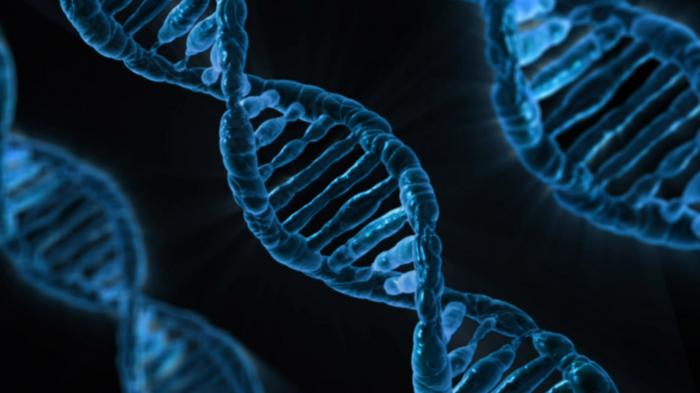 Microsoft: une machine qui transforme les bits informatiques en ADN