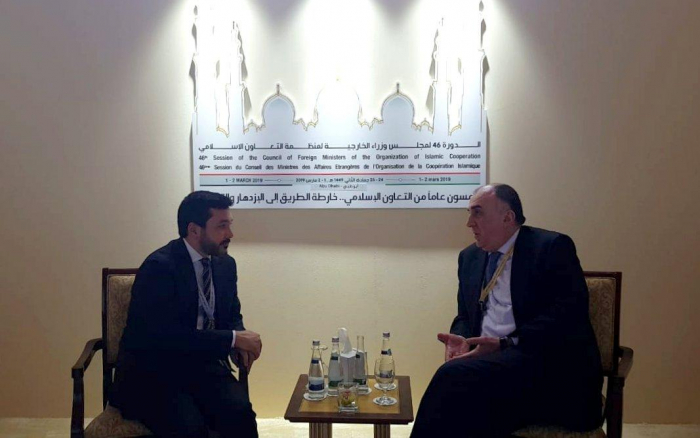 Azerbaijani FM meets president of Islamic Cooperation Youth Forum