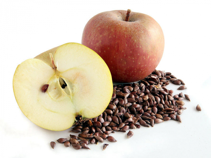Can apple seeds kill you?-  iWONDER
