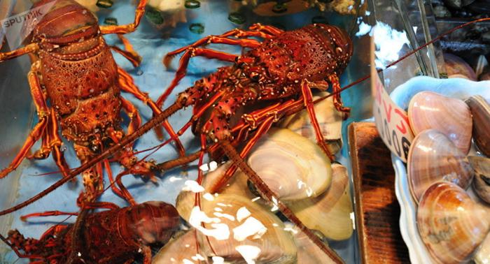 Innerhalb eines Monats: US-Militärs geben Millionen Dollar für Krabben aus – wozu?