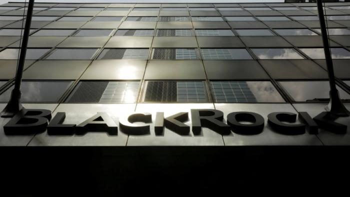 Großaktionär Blackrock sieht mögliche Bankenfusion skeptisch