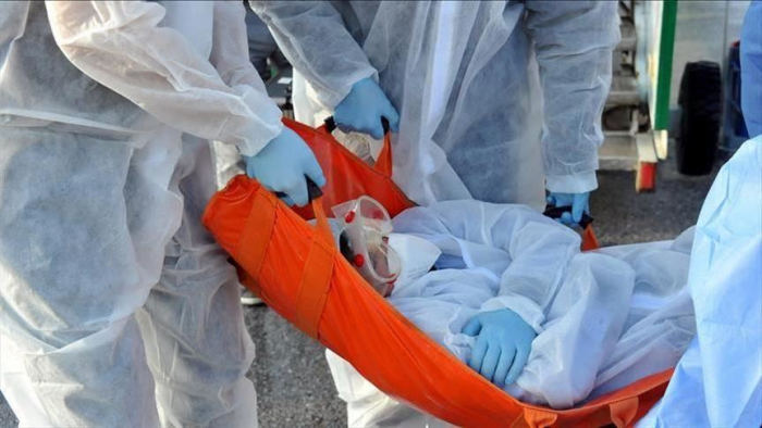 Death toll from Ebola climbs to 564 in DR Congo