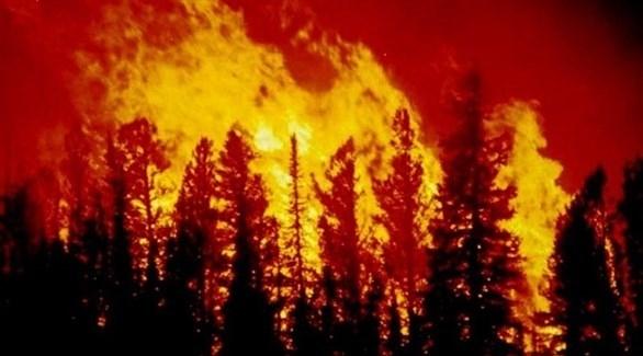 كاليفورنيا تعلن الطوارئ لحماية مناطق معرضة لحرائق