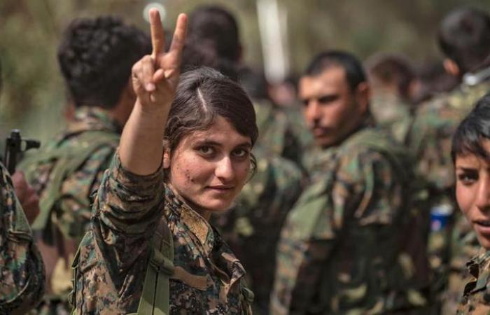 EN IMAGES -   Syrie : un drapeau pour célébrer la victoire sur l