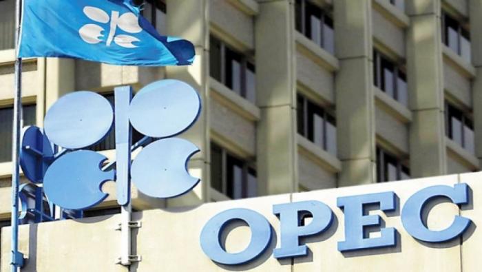 OPEC+ ölkələrinın Bakı toplantısı başlayıb