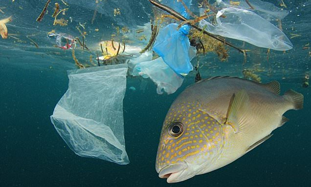 Plastic pollution   is one of the major health threats to the world
