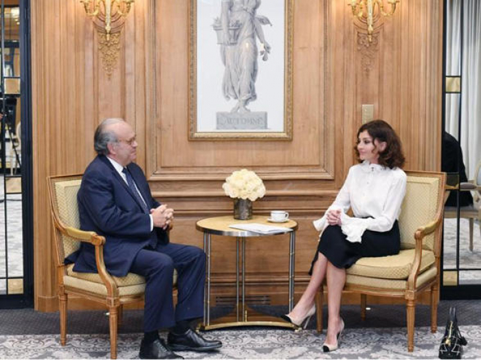 First VP of Azerbaijan Mehriban Aliyeva meetsfounder of French National Cancer Institute -UPDATED
