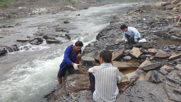 Hallan en China uno de los mayores tesoros fósiles del mundo