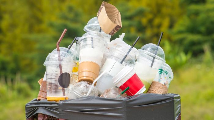 Plastique à usage unique:   accord sur une réduction d