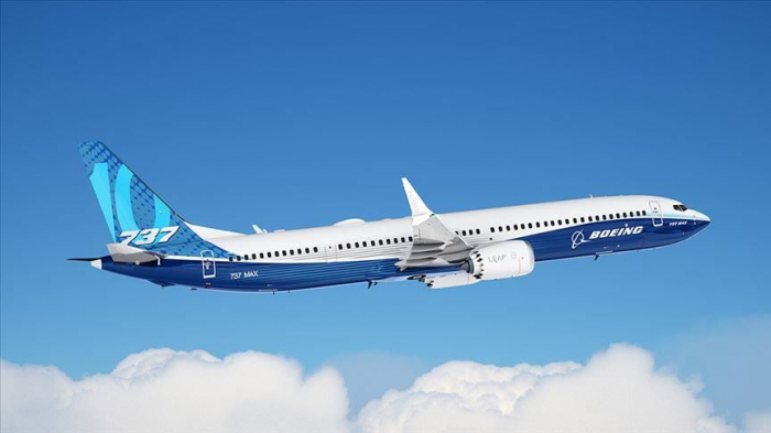 Sept pays suspendent tout usage du Boeing 737