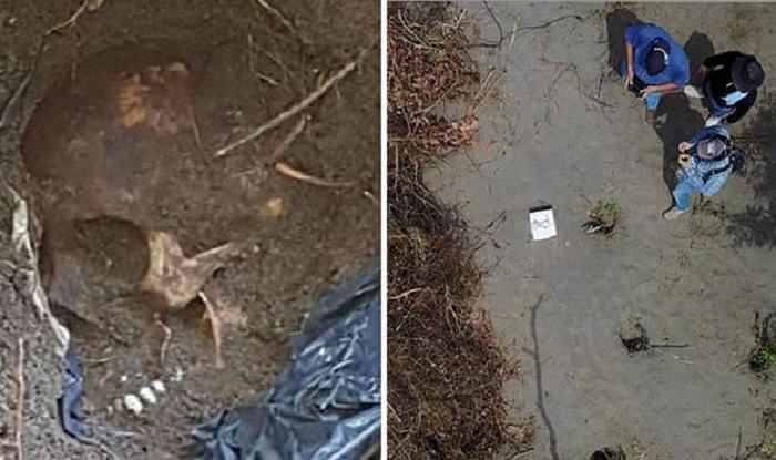 Meksikada gizli məzarlıqda 45 cəsəd tapıldı