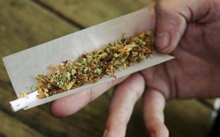 Dünyada 263 milyon insan marixuana istifadəçisidir