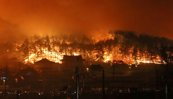 Thousands flee wildfire in South Korea