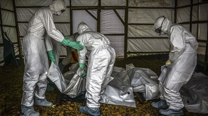 Ebola death toll in DR Congo rises to 698