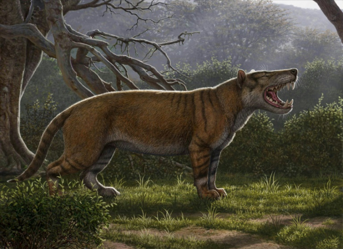 Researchers discover ancient giant