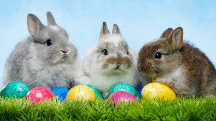 When is Easter 2019 and why does the date change every year?-  iWONDER