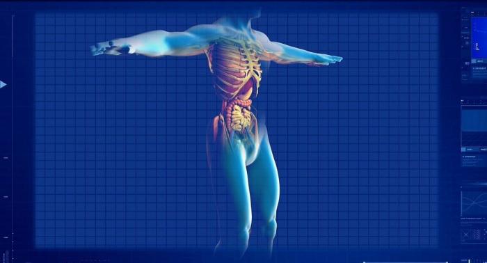 Tödliche Lebensmittel: Was Darmkrebs auslöst