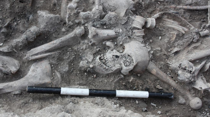 Skeleton DNA reveals surprising backgrounds of Crusader soldiers