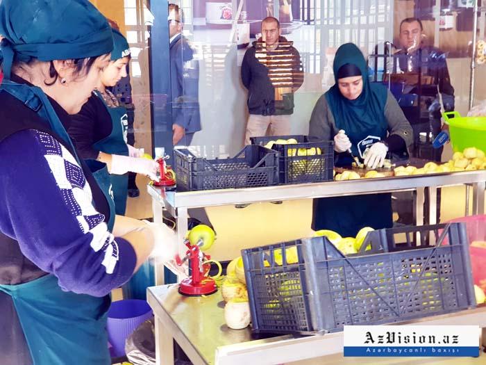 Qida məhsullarının istehsalı 26,8 faiz artıb