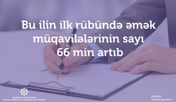 Bu il əmək müqavilələrinin sayı 66 min artıb