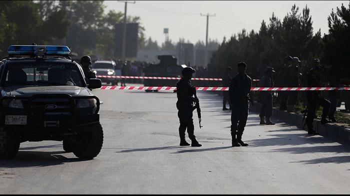 11 killed in gov
