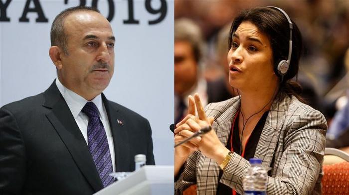 Le MAE turc fustige la France et lui rappelle son propre passé