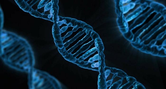 Le berceau de la civilisation humaine précisément découvert par des scientifiques