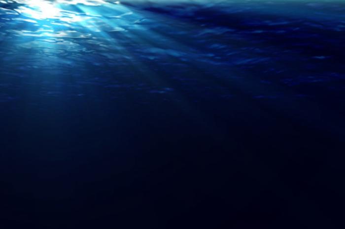Une découverte «unique» dans les profondeurs de la fosse des Mariannes