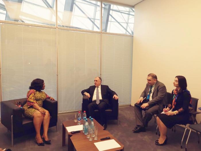 Azerbaijani FM meets Ghanaian counterpart