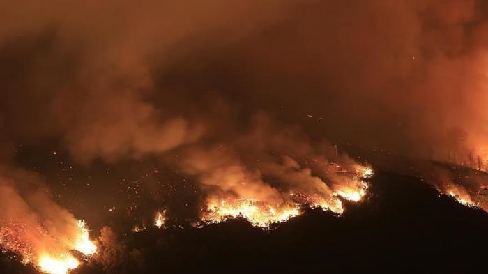 South Sudan wildfire kills 48, injures 68