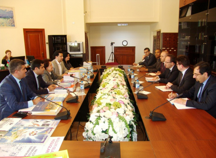Azerbaijani Ombudsman meets Director of Political Affairs Directorate of Council of Europe