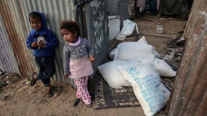 ONU:   Un millón de civiles en Gaza pueden no tener comida en junio
