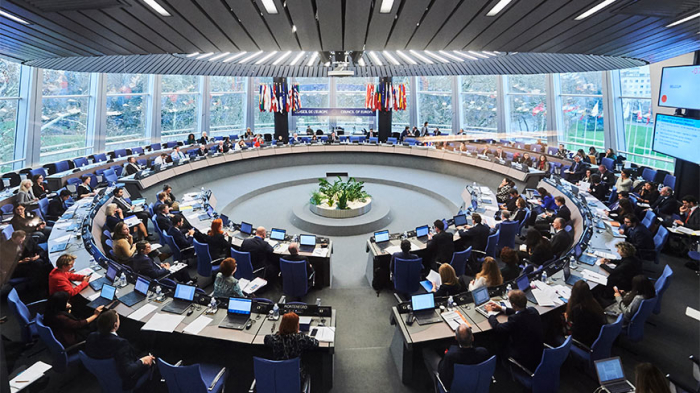 CoE Committee of Ministers approves its support for territorial integrity of all members