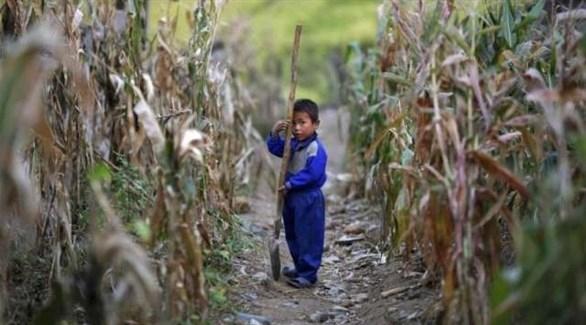 كوريا الشمالية تواجه أسوأ جفاف منذ 100 عام
