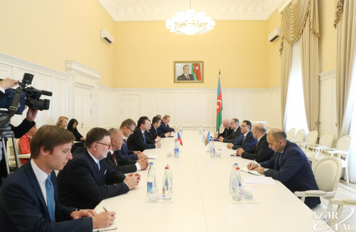 Azerbaijani PM meets with president of Chamber of Deputies of Czech Parliament