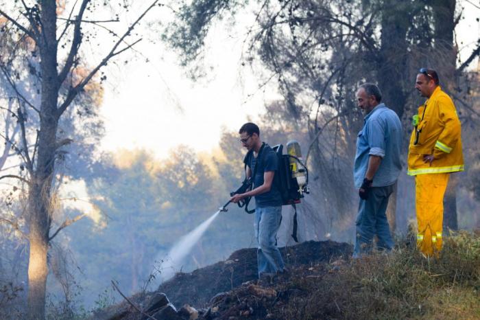 Une vague de chaleur provoque des feux de forêt en Israël