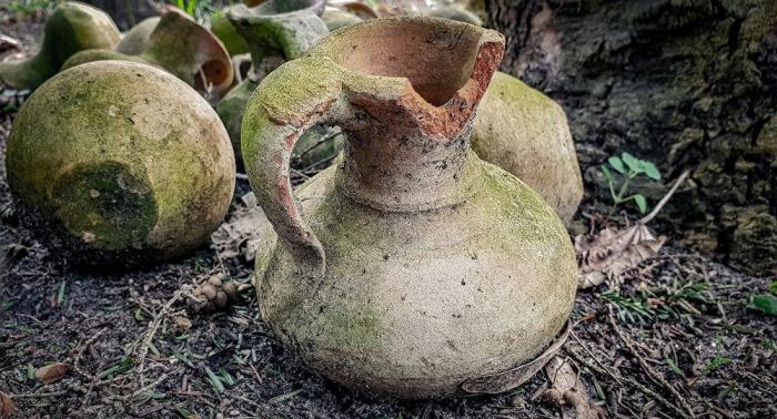 تصنيع مشروب كحولي استخدم في عهد مصر الفرعونية
