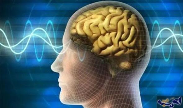 5 أشياء تحافظ على صحة الدماغ رغم تقدم العُمر