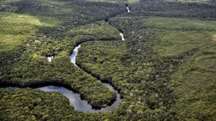 US-Konzern gewinnt im Streit mit Amazonas-Staaten