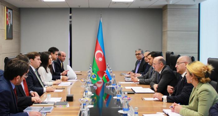 Azərbaycanla Braziliyanın enerji əməkdaşlığı