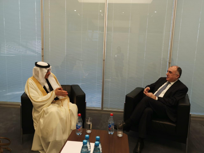 Azerbaijani Foreign Minister meets Secretary General of OIC