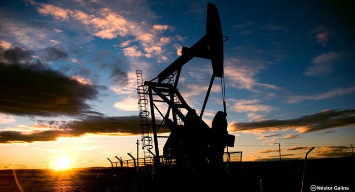 Los países del Golfo instan a defender la seguridad marítima tras ataques a petroleros