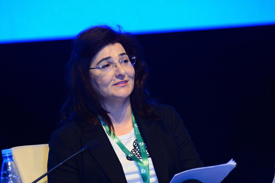 Deputy minister: Azerbaijan takes steps to achieve Sustainable Development Goals