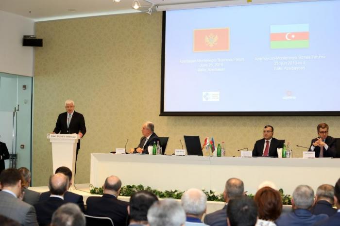 Azərbaycan-Monteneqro Biznes Forumu keçirilib