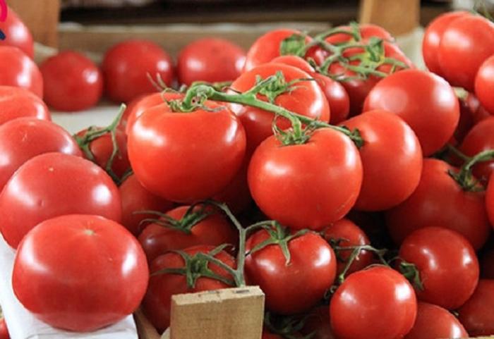 Rusiya 36 tondan çox pomidoru Azərbaycana geri qaytardı